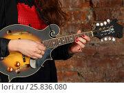 Купить «Female hands hold and play mini guitar in studio with red brick wall», фото № 25836080, снято 9 февраля 2016 г. (c) Losevsky Pavel / Фотобанк Лори