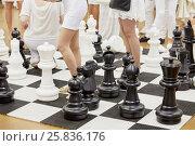 Купить «Large floor-stand chess figures and female legs among them», фото № 25836176, снято 12 июня 2015 г. (c) Losevsky Pavel / Фотобанк Лори