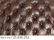 Купить «Texture background made of brown genuine leather upholstery of sofa or chair», фото № 25836252, снято 9 марта 2015 г. (c) Losevsky Pavel / Фотобанк Лори