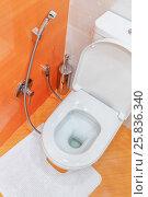 Купить «white toilet with cistern in room with orange walls and floors», фото № 25836340, снято 9 марта 2015 г. (c) Losevsky Pavel / Фотобанк Лори