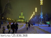 Купить «MOSCOW, RUSSIA - JAN 24, 2015: People walk under snowfall in evening at VDNKh. VDNKh is located in Ostankinsky District of Moscow, less than a kilometer from Ostankino Tower.», фото № 25836368, снято 24 января 2015 г. (c) Losevsky Pavel / Фотобанк Лори
