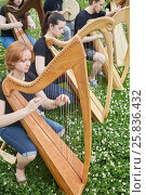 Купить «Six young musicians perform playing harps outdoors in park», фото № 25836432, снято 19 июня 2016 г. (c) Losevsky Pavel / Фотобанк Лори