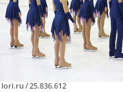 Купить «Skaters in beautiful costumes and skates on the ice in the sports complex, view below waist», фото № 25836612, снято 26 апреля 2015 г. (c) Losevsky Pavel / Фотобанк Лори