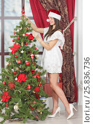 Купить «Full body portrait of woman near Christmas tree. Girl in white dress and Santa hat dresses up Christmas tree.», фото № 25836736, снято 14 декабря 2014 г. (c) Losevsky Pavel / Фотобанк Лори
