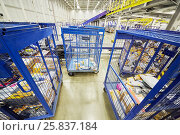 Купить «RUSSIA, MOSCOW - DEC 16, 2014: Carts with parcels and letters in post department of automated sorting center in Vnukovo. Moscow Automated sorting center - the largest in Eastern Europe.», фото № 25837184, снято 16 декабря 2014 г. (c) Losevsky Pavel / Фотобанк Лори