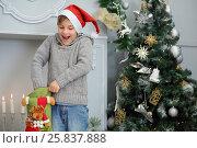 Купить «Happy boy in santa cap takes out sock gift near christmas tree», фото № 25837888, снято 24 декабря 2014 г. (c) Losevsky Pavel / Фотобанк Лори