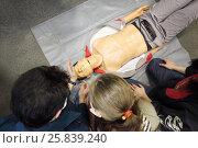 Купить «First aid learning in Emercom - training mannequin and heads of students», фото № 25839240, снято 17 декабря 2014 г. (c) Losevsky Pavel / Фотобанк Лори