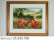 Купить «Landscape, embroidered on cloth, in a wooden frame on the wall», фото № 25839780, снято 15 декабря 2015 г. (c) Losevsky Pavel / Фотобанк Лори