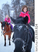 Купить «Two little girls in winter clothes sitting on horseback in front of trees, soft focus on the right girl», фото № 25839824, снято 5 января 2015 г. (c) Losevsky Pavel / Фотобанк Лори