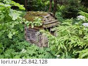 Купить «Old wooden beehive in the forest», фото № 25842128, снято 18 июня 2016 г. (c) Losevsky Pavel / Фотобанк Лори