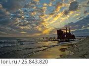 Раннее утро в Тунисе (2016 год). Стоковое фото, фотограф Татьяна Никитина / Фотобанк Лори