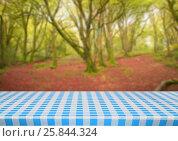 Купить «Picnic table against blurry forest», фото № 25844324, снято 22 февраля 2018 г. (c) Wavebreak Media / Фотобанк Лори
