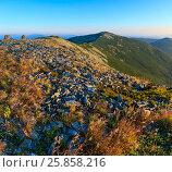 Купить «Summer morning Carpathian mountains.», фото № 25858216, снято 27 марта 2019 г. (c) Юрий Брыкайло / Фотобанк Лори