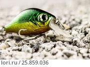 Воблер на гравийном песке. Стоковое фото, фотограф Михаил Аникаев / Фотобанк Лори