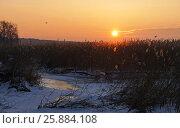 Купить «Winter sunset on the river, snow and reeds», фото № 25884108, снято 27 января 2015 г. (c) Andrejs Vareniks / Фотобанк Лори
