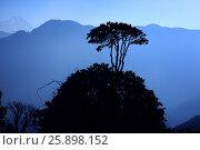 Mountain landscape - the Himalayas, sunrise, Nepal (2009 год). Стоковое фото, фотограф Анастасия Кононенко / Фотобанк Лори
