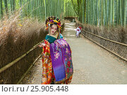 Купить «Japanese Geisha at Chikurin-no-Michi (Bamboo Grove) in Arashiyama in Kyoto», фото № 25905448, снято 17 июля 2019 г. (c) BE&W Photo / Фотобанк Лори