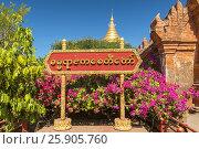 Купить «Dhammayazika Pagoda Temple on the Plain of Bagan, Bagan, Myanmar (Burma)», фото № 25905760, снято 6 июня 2020 г. (c) BE&W Photo / Фотобанк Лори