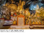 Купить «These caves are Buddhist shrines where thousands of Buddha images have been consecrated for worship over the centuries in Pindaya, Myanmar», фото № 25905912, снято 25 сентября 2018 г. (c) BE&W Photo / Фотобанк Лори