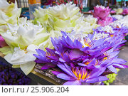 Купить «Flowers sold to be used as offerings in front of the Temple of the Tooth Relic in Kandy, Sri Lanka», фото № 25906204, снято 23 мая 2019 г. (c) BE&W Photo / Фотобанк Лори