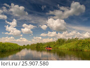 Family in a canoe on the Biebrza river national park, Poland. Стоковое фото, агентство BE&W Photo / Фотобанк Лори