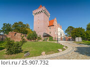 Купить «Historical city center and reconstruction of the Castle King Przemyslaw in Poznan, Poland», фото № 25907732, снято 22 октября 2019 г. (c) BE&W Photo / Фотобанк Лори