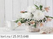 Купить «chrysanthemum in basket on white background», фото № 25913648, снято 5 апреля 2017 г. (c) Майя Крученкова / Фотобанк Лори