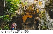 Купить «DA LAT, VIETNAM - OCTOBER 1, 2016: Hang Nga Guesthouse Crazy House, design Interior and Exterior landmark architecture Odd House», видеоролик № 25915196, снято 1 октября 2016 г. (c) Mikhail Davidovich / Фотобанк Лори