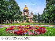 Купить «St. Isaac's Cathedral in St. Petersburg on a summer evening and brightly-colored flowers in a flowerbed», фото № 25950592, снято 23 июля 2016 г. (c) Baturina Yuliya / Фотобанк Лори