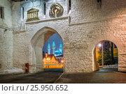 Купить «Kul-Sharif Mosque through the archway of the entrance to the Kazan Kremlin on a winter night», фото № 25950652, снято 9 марта 2017 г. (c) Baturina Yuliya / Фотобанк Лори