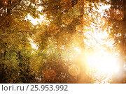 Купить «Composite image of glowing background», фото № 25953992, снято 16 сентября 2019 г. (c) Wavebreak Media / Фотобанк Лори