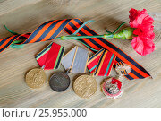 Купить «9 мая, открытка - юбилейные медали Великой Отечественной войны, три красные гвоздики и георгиевской ленточка. Открытка на День Победы 9 Мая», фото № 25955000, снято 3 апреля 2017 г. (c) Зезелина Марина / Фотобанк Лори