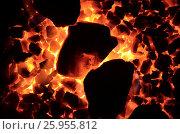 Купить «Фон из горящего угля мелкой фракции и уложенной косо крупной», фото № 25955812, снято 10 апреля 2017 г. (c) Игорь Кутателадзе / Фотобанк Лори
