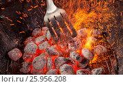 Empty Hot Charcoal Barbecue Grill With Flame. Стоковое фото, фотограф Maxim Tarasyugin / Фотобанк Лори