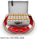 Купить «Финансовая безопасность», иллюстрация № 25956324 (c) WalDeMarus / Фотобанк Лори