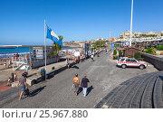 Купить «Голубой флаг на входе на пляж с серым вулканическим песком. Плая Фанабе (Playa Fanabe). Коста Адехе, Тенерифе, Канарские острова, Испания», фото № 25967880, снято 31 декабря 2015 г. (c) Кекяляйнен Андрей / Фотобанк Лори