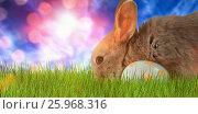 Купить «Composite image of bunny with floral pattern easter egg», фото № 25968316, снято 9 декабря 2018 г. (c) Wavebreak Media / Фотобанк Лори