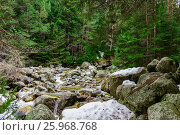 Купить «Mountain river stones», фото № 25968768, снято 15 марта 2017 г. (c) Дмитрий Брусков / Фотобанк Лори