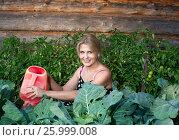 Красивая женщина поливает поливает растения из лейки. Стоковое фото, фотограф Александр Новиков / Фотобанк Лори