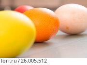 Купить «Easter eggs», фото № 26005512, снято 15 апреля 2017 г. (c) Олег Шеломенцев / Фотобанк Лори