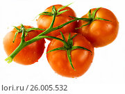 Tomatoes isolated on the white. Стоковое фото, фотограф Михаил Аникаев / Фотобанк Лори