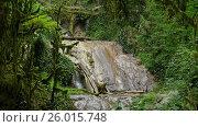 Купить «Waterfall in summer forest of Caucasus Mountains», видеоролик № 26015748, снято 3 апреля 2017 г. (c) Михаил Коханчиков / Фотобанк Лори