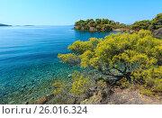 Купить «Morning Aegean coast, Sithonia, Greece.», фото № 26016324, снято 24 июля 2016 г. (c) Юрий Брыкайло / Фотобанк Лори