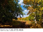 Купить «Осень в Башкирии», фото № 26019404, снято 13 сентября 2014 г. (c) Студенников Иван / Фотобанк Лори