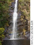 Купить «Waterfall Gully», фото № 26024224, снято 20 августа 2015 г. (c) Кропотов Лев / Фотобанк Лори