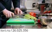 Купить «hands of male chef cook chopping celery in kitchen», видеоролик № 26025356, снято 19 июля 2019 г. (c) Syda Productions / Фотобанк Лори