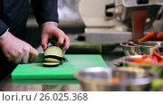 Купить «hands of male chef chopping eggplant in kitchen», видеоролик № 26025368, снято 7 июля 2020 г. (c) Syda Productions / Фотобанк Лори