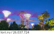 Купить «Day to night rotation  timelapse from Gardens by the bay in Singapore», видеоролик № 26037724, снято 23 марта 2019 г. (c) Кирилл Трифонов / Фотобанк Лори