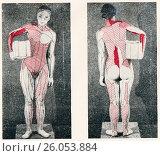 Купить «Статические напряжения мышц человека при держании груза», иллюстрация № 26053884 (c) Макаров Алексей / Фотобанк Лори