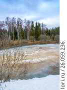 Beautiful spring landscape with a small lake covered with ice, фото № 26059236, снято 15 апреля 2017 г. (c) Валерий Смирнов / Фотобанк Лори